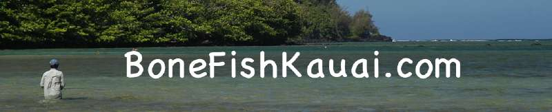 Kauai Fly Fishing Bonefishing - Hawaii Fly Fishing for the Elusive Hawaiian Bonefish